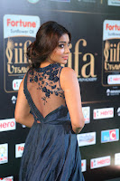 Shriya Saran in Beautiful Transparent Dark Gown IIFA Utsavam Awards 2017 003.JPG