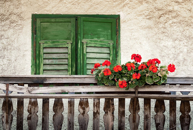 Italian wooden balcony and red flowers