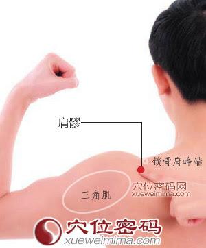 肩髎穴位 | 肩髎穴痛位置 - 穴道按摩經絡圖解 | Source:xueweitu.iiyun.com