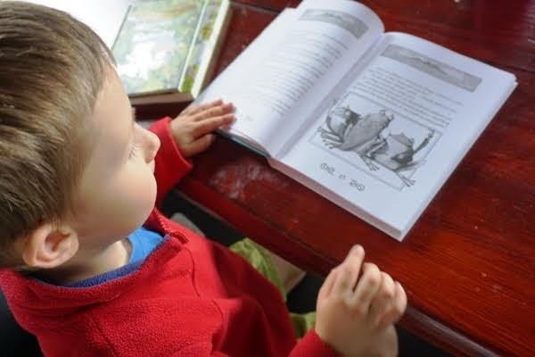 EKSPEDYCJA Tappiego, książka dla dzieci