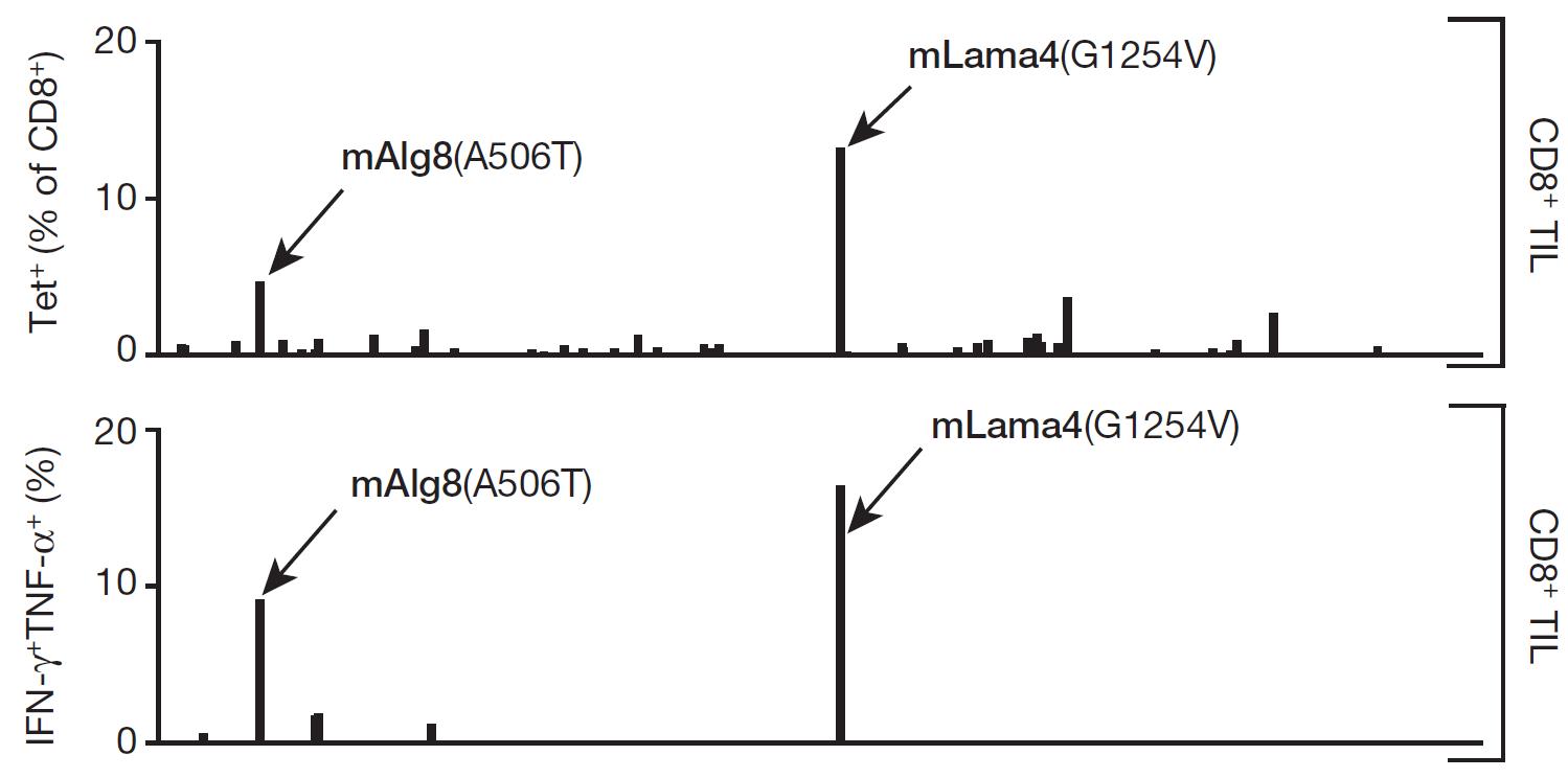 Algorithm-based immune-epitope discovery | NIHilist's Immunology
