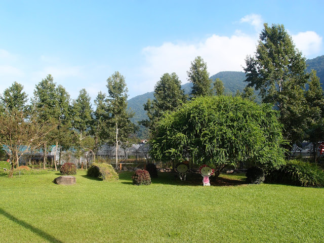 Tai-Yi Ecological Leisure Farm