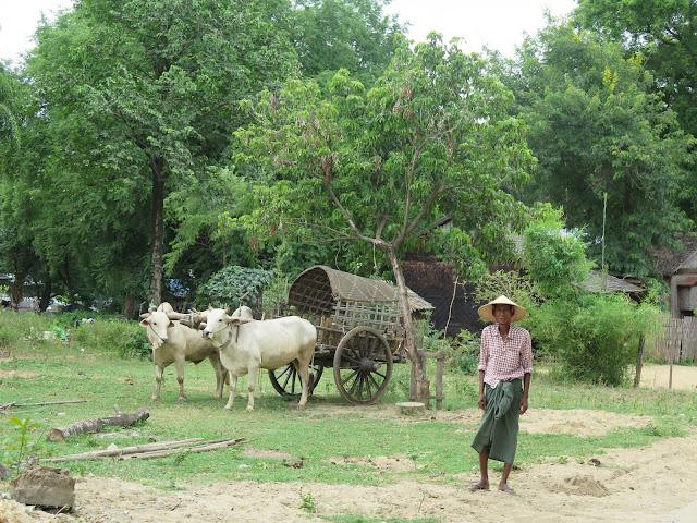 Hombre bamar con longyi en la zona de Mingun