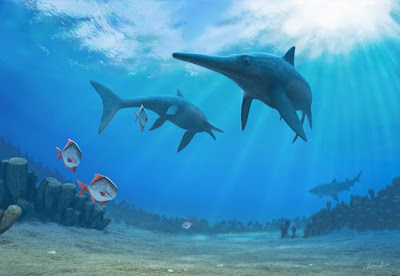 Slower evolution and climate change drove ichthyosaurs to extinction