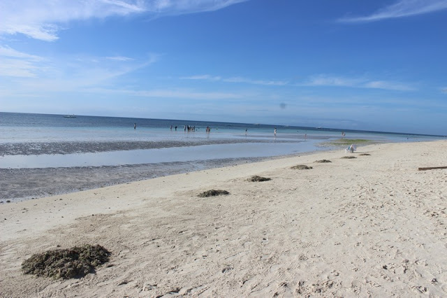 What to do in Panglao Island Bohol Philippines