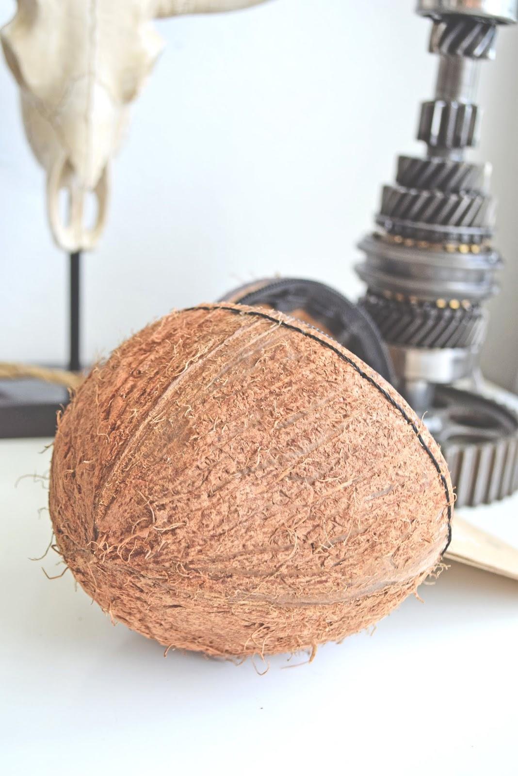 Co można zrobić ze skorupy od orzecha kokosa?
