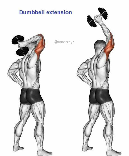 one hand dumbbell extension workout