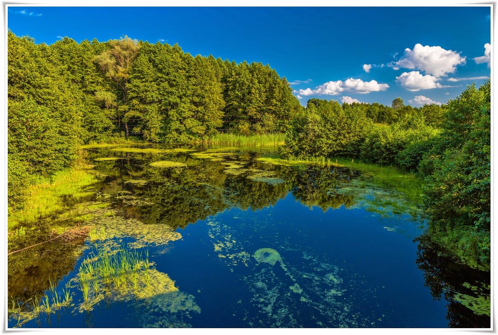 44 Koleksi Gambar Di Buku Gambar Pemandangan Alam Gratis