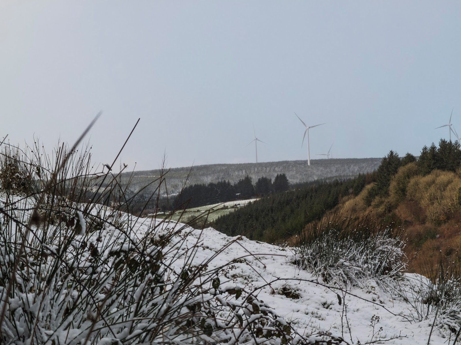 Wintry landscape of a snowy valley in North Cork.