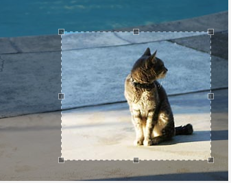 7 Best jQuery Image Crop and Resize Plugins with Examples