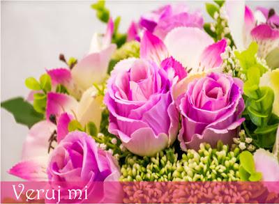 """Ružičaste ruže su dobar način da nekom pokažete uvažavanje, zahvalnost, divljenje, nežnost, poželite sreću ili da kažete """"Molim te, veruj mi""""."""