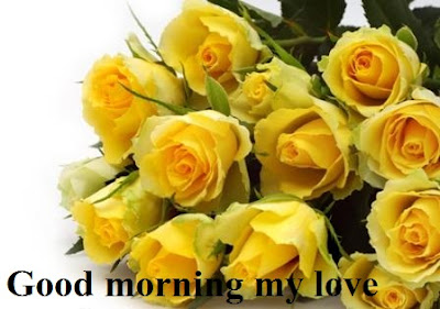 Good morning images for lover with yellow roses