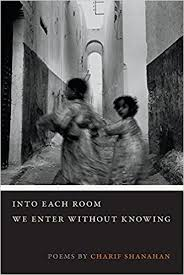 https://www.goodreads.com/book/show/30315844-into-each-room-we-enter-without-knowing?from_search=true