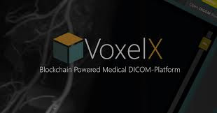 VoxelIX-ICO-Review, Blockchain, Cryptocurrency
