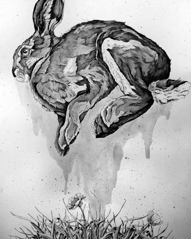 06.Rabbit-A-Landerman-Animal-Drawings-Paintings-in-Graphite-and-Ink