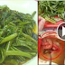 Eating Kangkong Can Be Dangerous! Here Is The Reason Why!