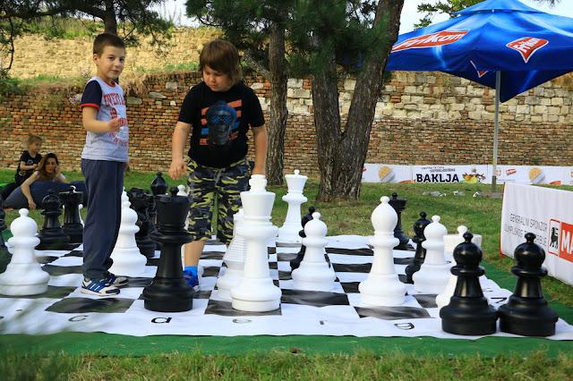 IQ zona - partija šaha
