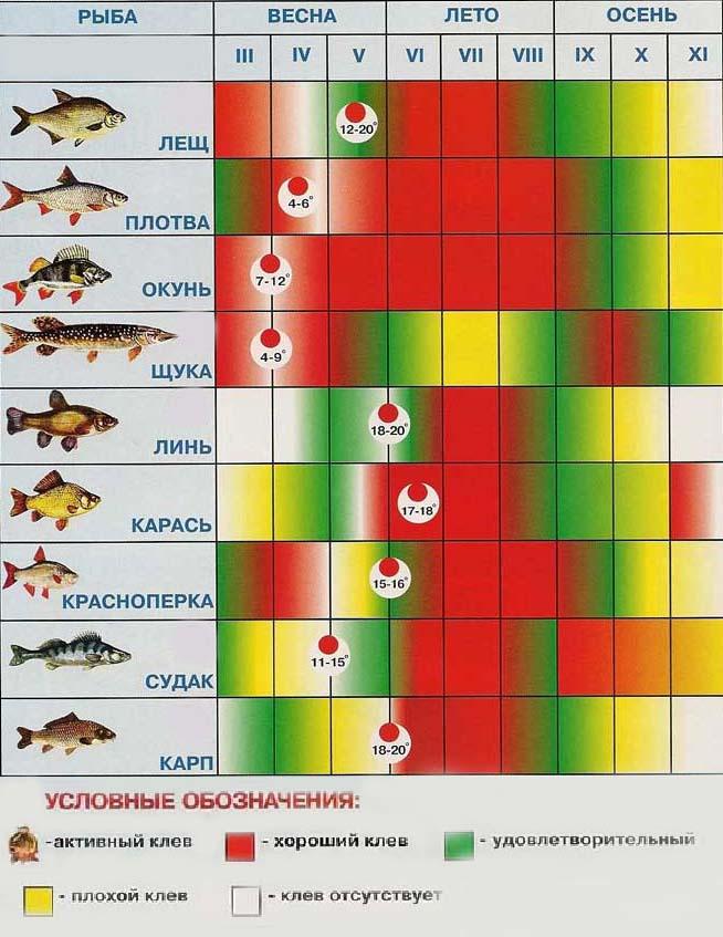 Влияние атмосферного давления на клев хищных рыб