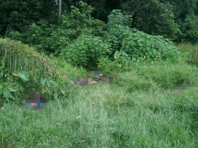 Empat Mayat Yang Sudah Berulat Ditemukan Dalam Kawasan Semak