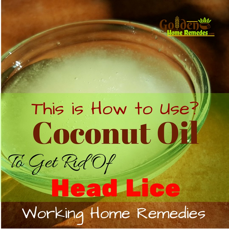 Natural Products To Get Rid Of Head Lice
