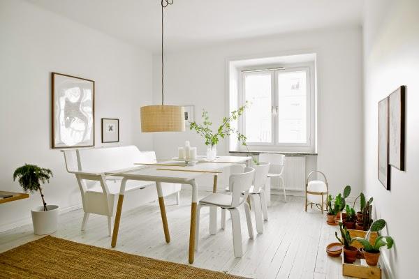 White interior with cacti plants.
