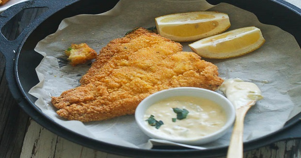 Southern Fried Cat Fish Recipe