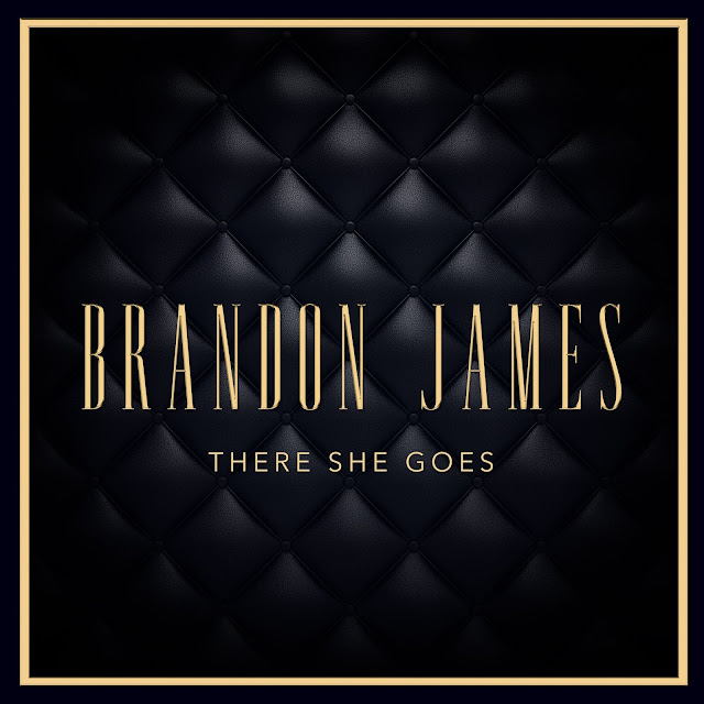 """Chicago Artist Brandon James Releases Music Video For """"There She Goes"""""""