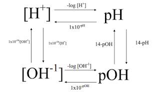 Pre-AP Chemistry Blog: pH and More