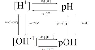 Pre-AP Chemistry Blog: pH and More