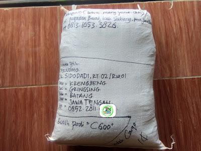 Benih Padi Pesanan  PURNOMO Batang, Jateng.  Benih Sesudah di Packing