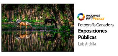 Concurso de Fotografía de Nueva Acrópolis