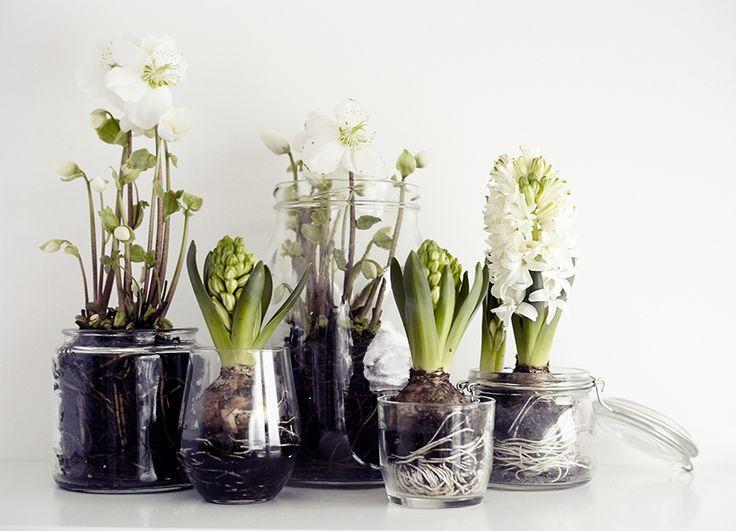 Favorito Vasi creativi per fiori e piante - Idee fai da te e riciclo | ARC  OB35