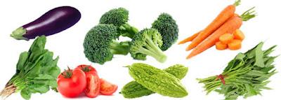 sayuran 4 sehat 5 sempurna