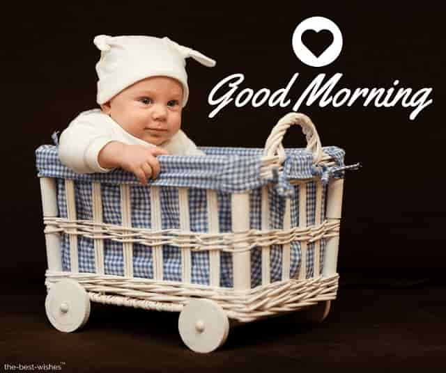 adorable baby basket beautiful boy picture