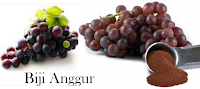 Kandungan WMP Ekstrak Biji Anggur