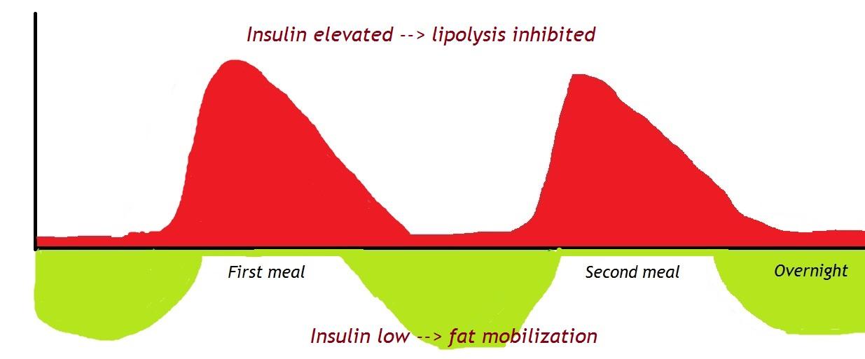 Hartes Insulin wie Abnehmen