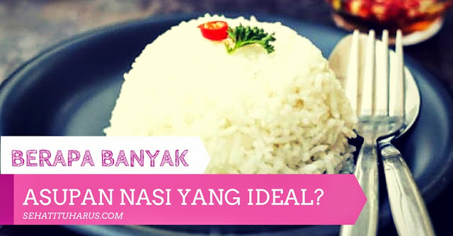 Berapa Banyak Jumlah Asupan Nasi yang Ideal?