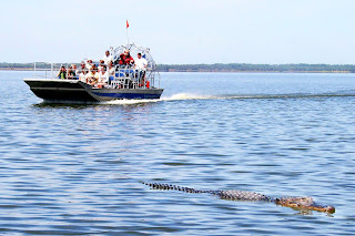 New Orleans Swamp Tour Coupons