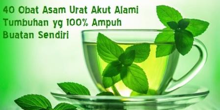40 Obat Asam Urat Akut Alami Tumbuhan yg 100% Ampuh Buatan Sendiri