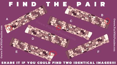 Answer of Find the Pair Hard Picture Riddle