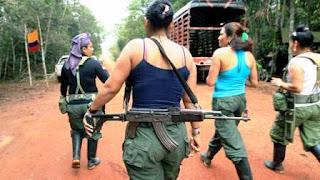 Las FARC ordenan a sus filas moverse a posiciones seguras