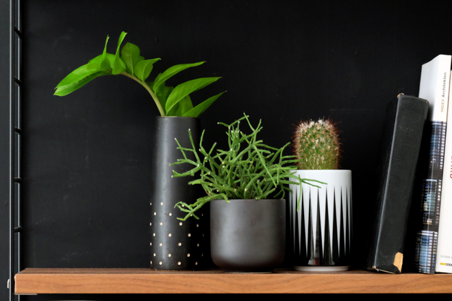 Minza will Sommer. Urban Jungle Bloggers, Plant Shelfie, String Furniture, Stelton, Ferm Living, Kaktus, String Pocket, Schlafzimmer, Zimmerpflanzen, schwarze Wand