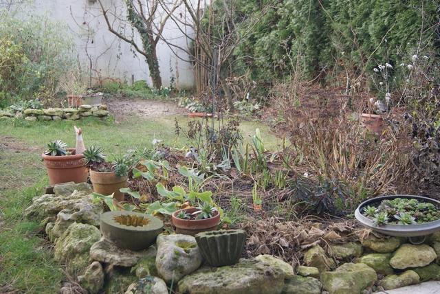 Blick in den Garten im Januar