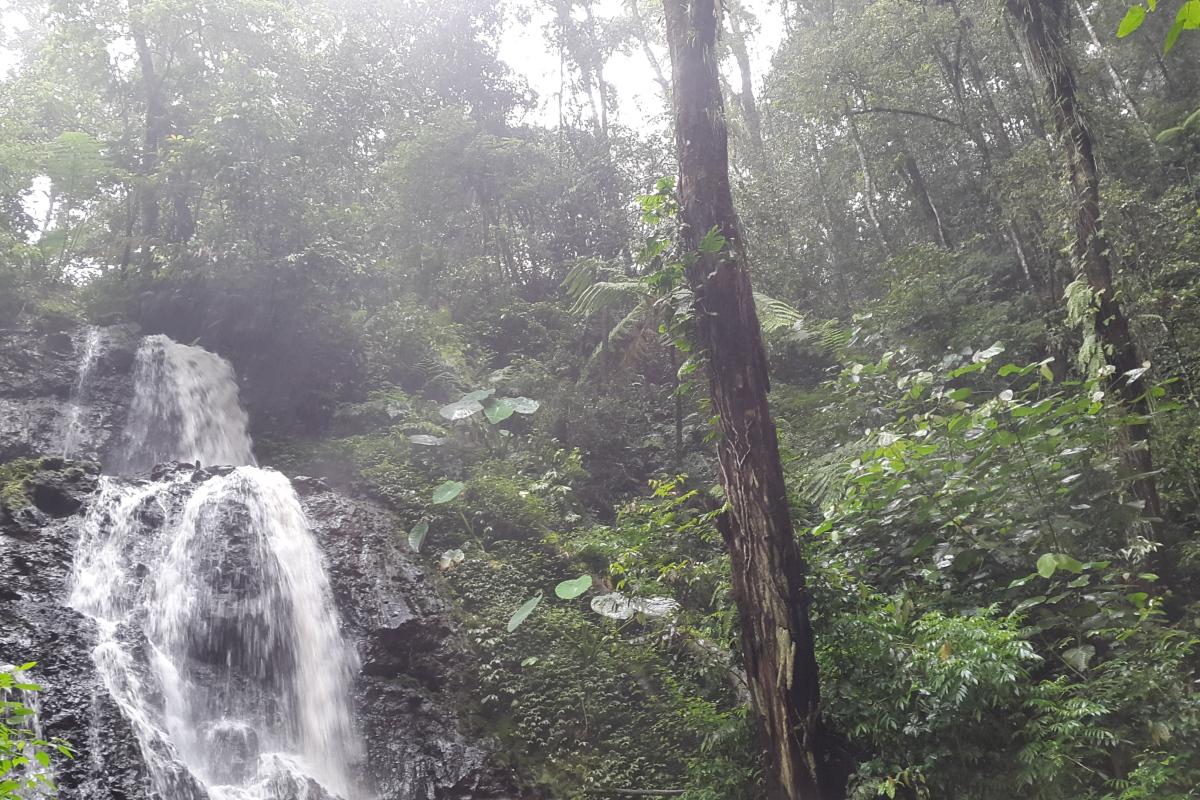 +15 Wisata Alam Coban Waru Mojokerto Jawa Timur