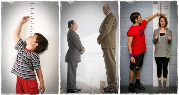 Tips grow taller: Are you tired of being short? Dissatisfied with your height?