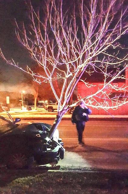 Detienen a una mujer que conducía ebria y con un árbol de 4.5 metros en el cofre