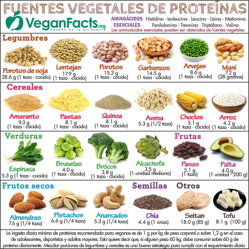 dieta alta en proteinas para aumentar masa muscular pdf