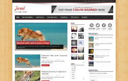 Jarid is a free premium blogger template with three columns, magazine style
