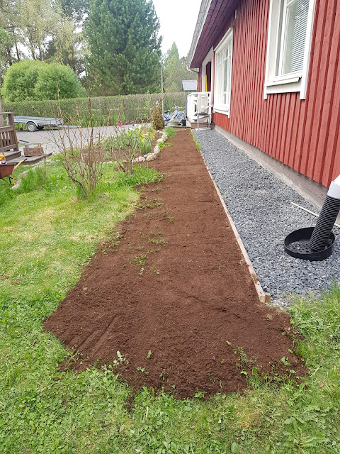nurmikon istutus ja parantaminen