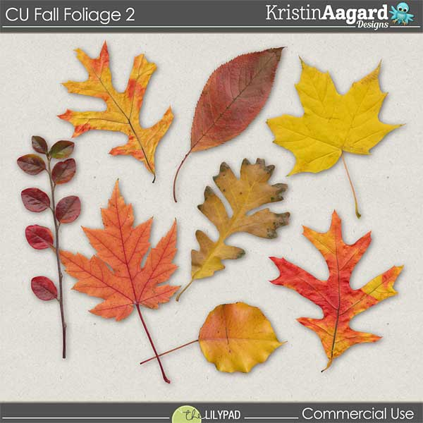 http://the-lilypad.com/store/digital-scrapbooking-cu-fall-foliage-2.html